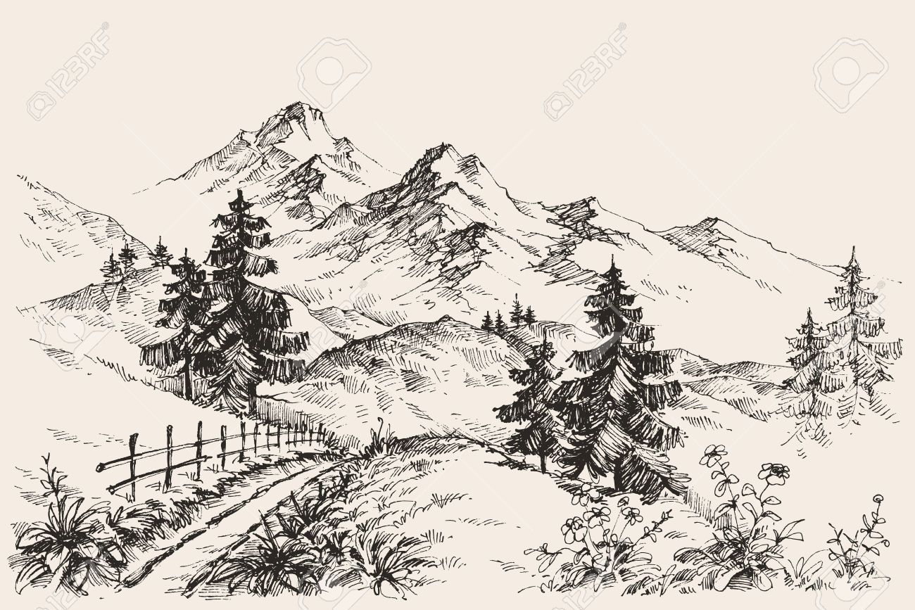 Mountain with trees and road clipart black and white graphic freeuse stock Stock Vector | Pencil - Tree Sketching Methods in 2019 ... graphic freeuse stock
