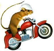Mouse and the motorcycle clipart clipart 89 Best The Mouse and the Motorcycle images in 2012   Mouse ... clipart