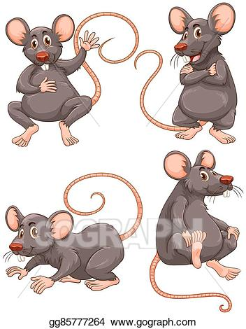 Vector Art - Mouse with gray fur in four actions. EPS ... picture free