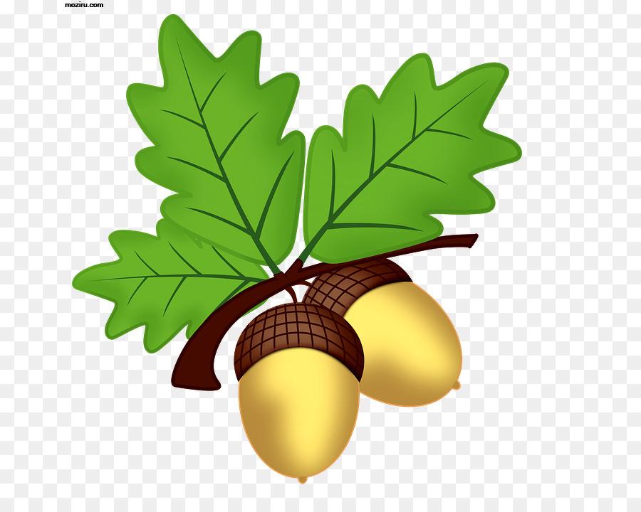 Oak Tree Leaf clipart - Oak, Leaf, Food, transparent clip art jpg freeuse