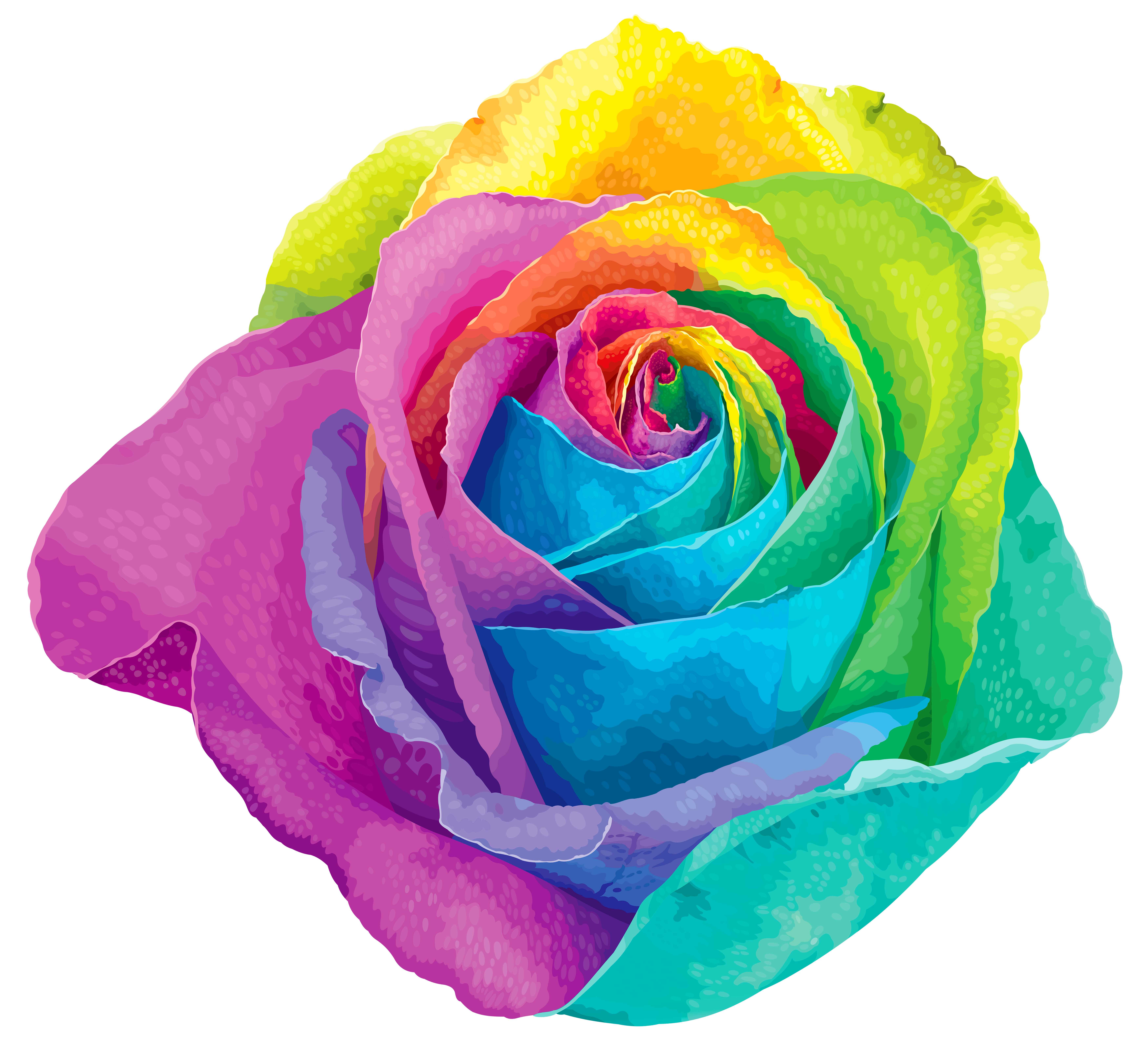 Multi colored clipart banner royalty free download Multicolored Rainbow Rose Transparent PNG Clip Art Image ... banner royalty free download