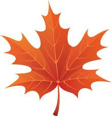 Multicolored maple leaf clipart clip art black and white download 48 Best Maple Leaves images in 2019 | Maple leaves, Fall leaves ... clip art black and white download