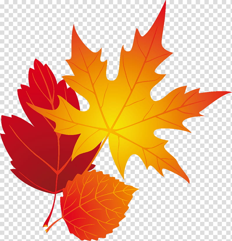 Multicolored maple leaf clipart picture download LIGHT, orange maple leaf painting transparent background PNG clipart ... picture download