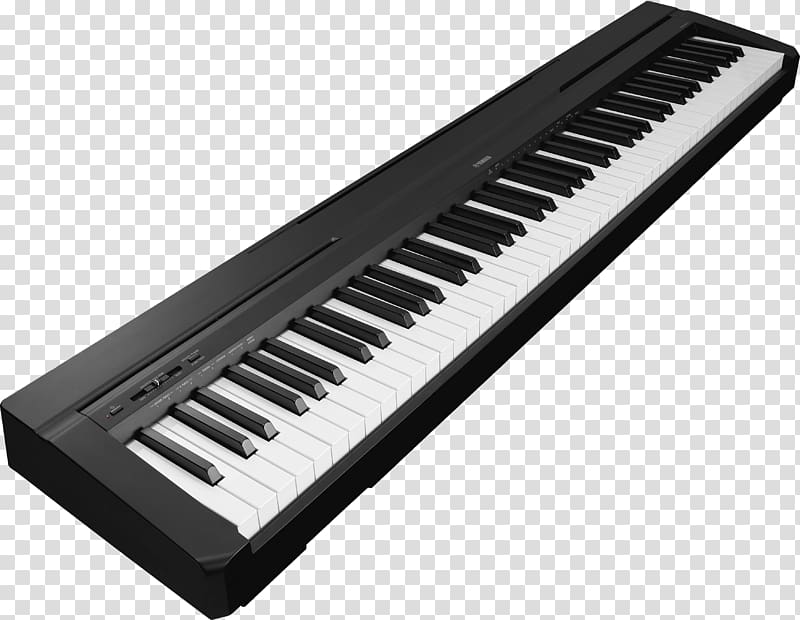 Musical instrument keyboard clipart black and white png library Yamaha P-115 Digital piano Keyboard Action, piano transparent ... png library