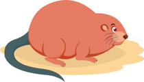 Search Results for muskrat - Clip Art - Pictures - Graphics ... jpg black and white library