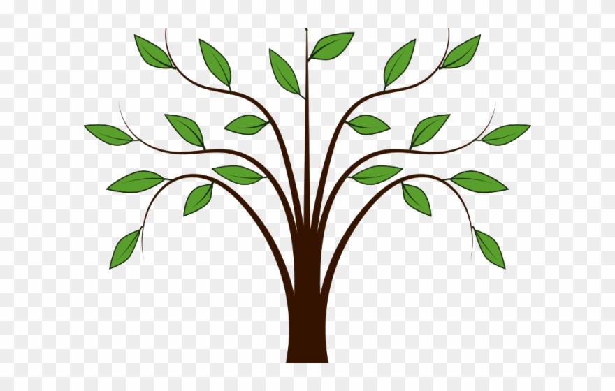 Mustard tree clipart vector free stock Heaven Clipart Mustard Tree - Simple Tree Clip Art - Png ... vector free stock