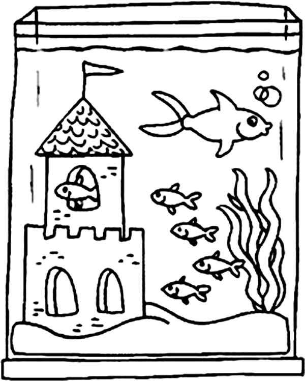 Mutiple fish tanks clipart black and white png freeuse Fish Tank Drawing Easy | gdlawct.com png freeuse