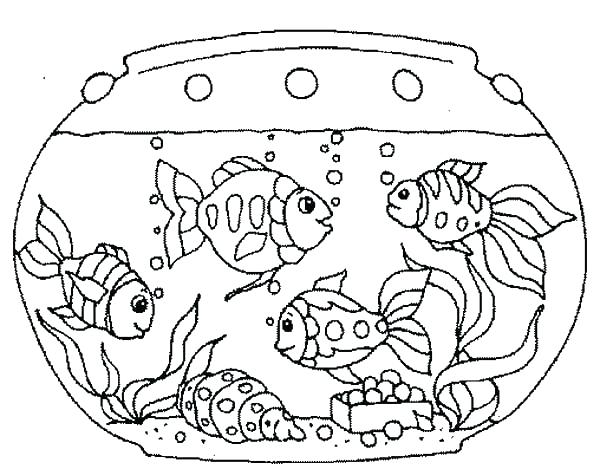 Mutiple fish tanks clipart black and white black and white Tank clipart coloring - 64 transparent clip arts, images and ... black and white