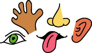 Sensory clipart vector free stock Free 5 Senses Cliparts, Download Free Clip Art, Free Clip ... vector free stock