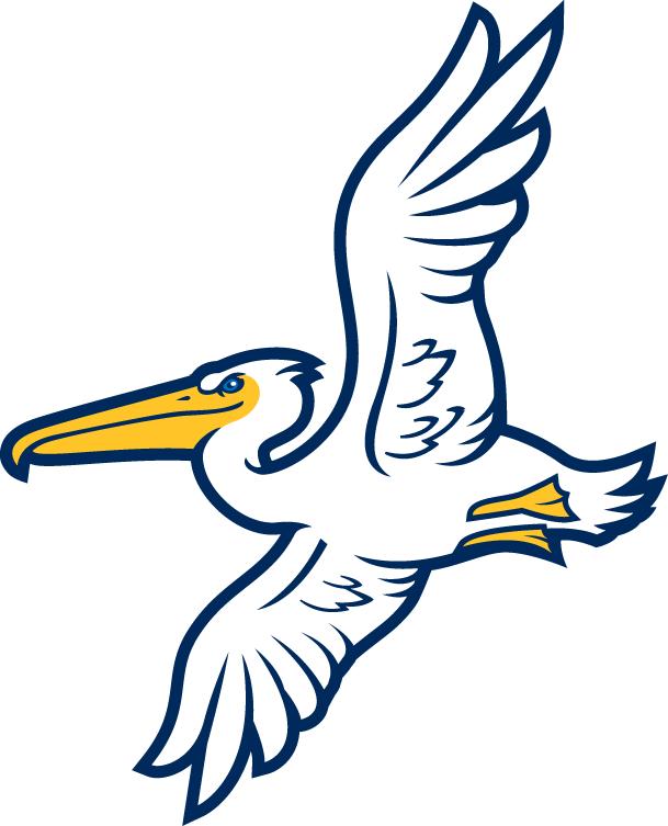 Myrtle beach pelicans clipart clip art free library Myrtle Beach Pelicans Alternate Logo (2007) - | logos_sports ... clip art free library