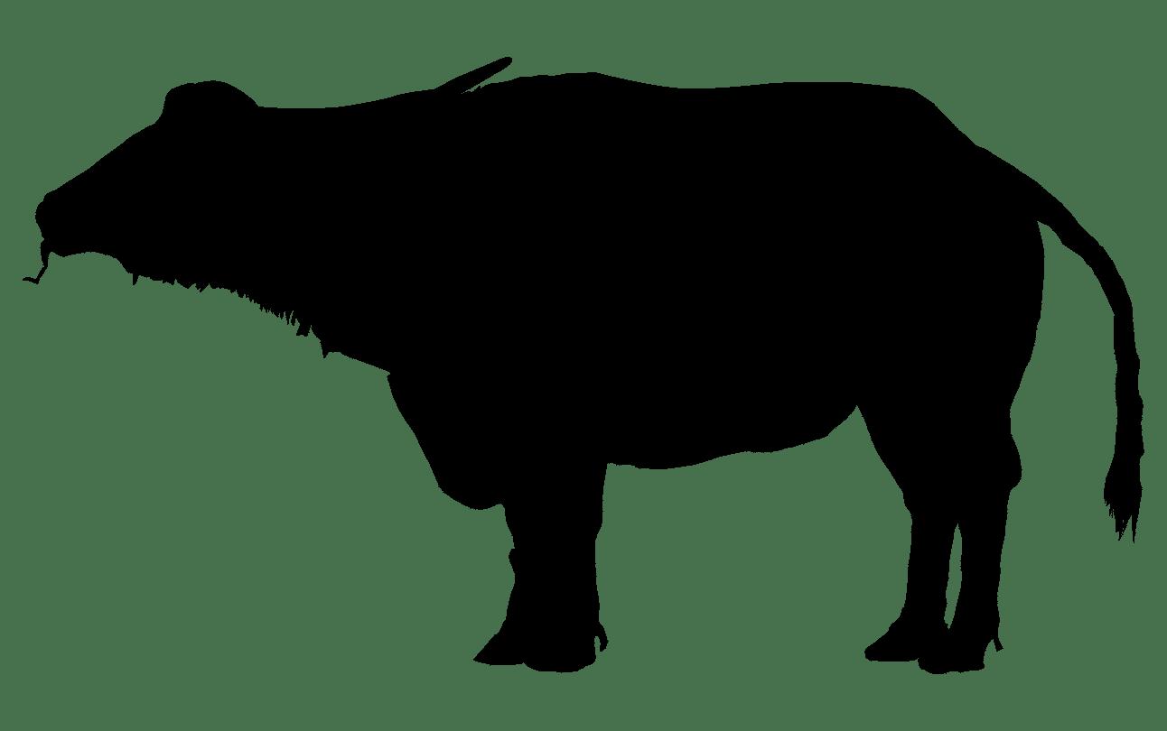 Native american buffalo clipart free silhouette png free library Water buffalo Silhouette American bison Clip art ... png free library