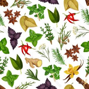 Natural medicine clipart vector free library Herbal Medicine Bio Logo Vector | SOIDERGI vector free library