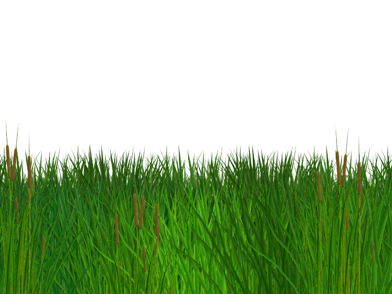 Nature clipart for photoshop jpg library stock Seamless Grass Border Free PNG Clipart (Nature-Grass-And ... jpg library stock
