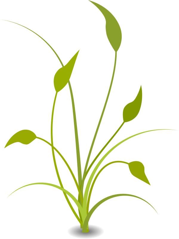 Nature cliparts png freeuse stock Nature clip art for free clipart images 2 - Clipartix png freeuse stock