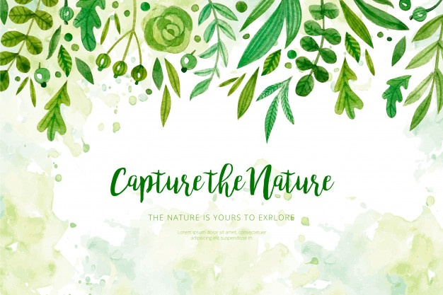 Nature vector clipart banner library library Nature vectors, +332,000 free files in .AI, .EPS format banner library library