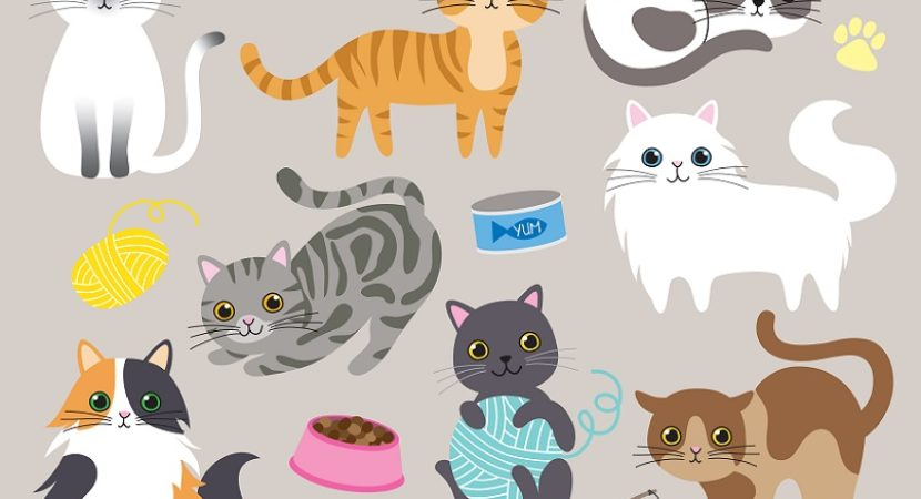 New hairless cat at home funny clipart svg transparent Top 10 Most Expensive Cat in the World svg transparent
