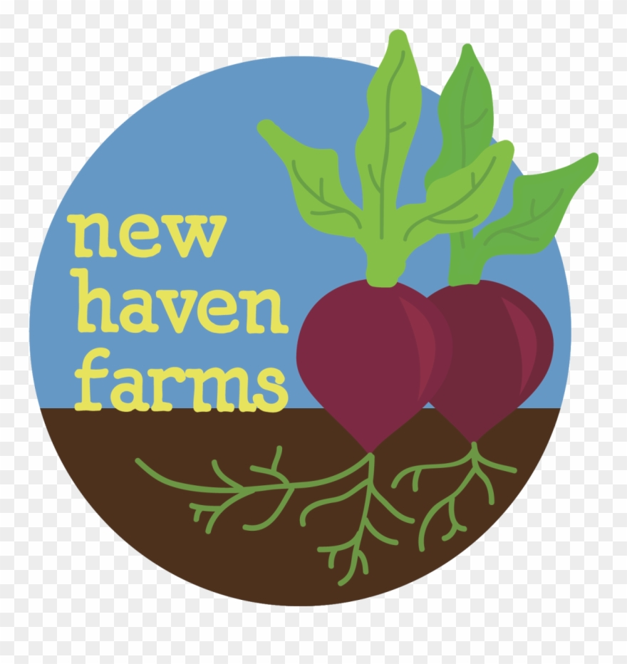 New haven clipart vector royalty free library New Haven Farms Is Looking For An Administrative Assistant ... vector royalty free library