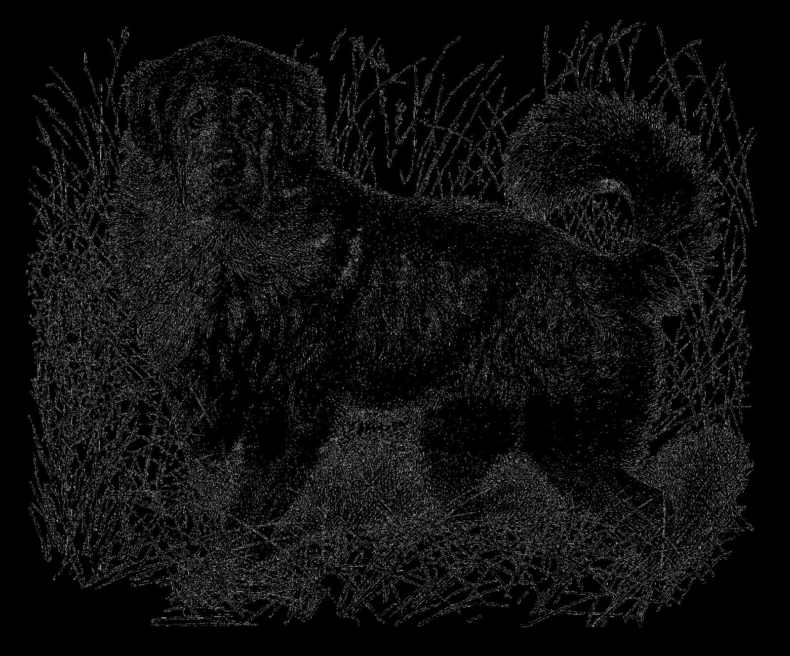 Newfoundland dog clipart svg free Antique Images: July 2015 svg free