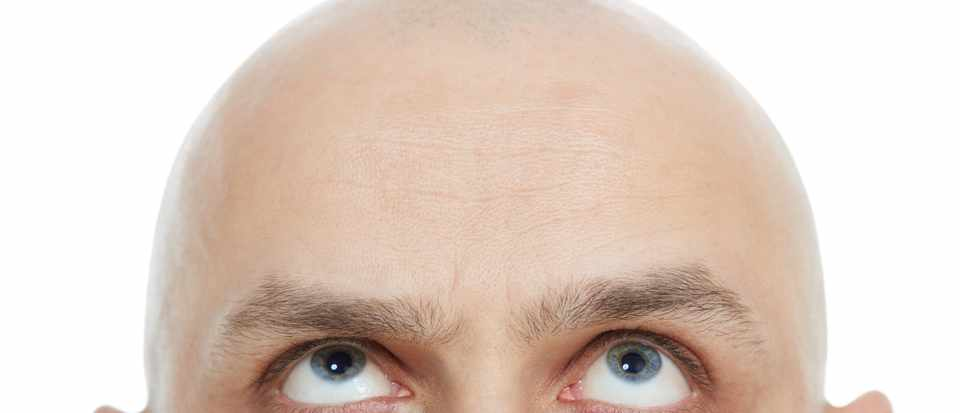 Nice bald forty five year old man clipart picture royalty free library Why do old men go bald, but get hairy nostrils? - BBC ... picture royalty free library