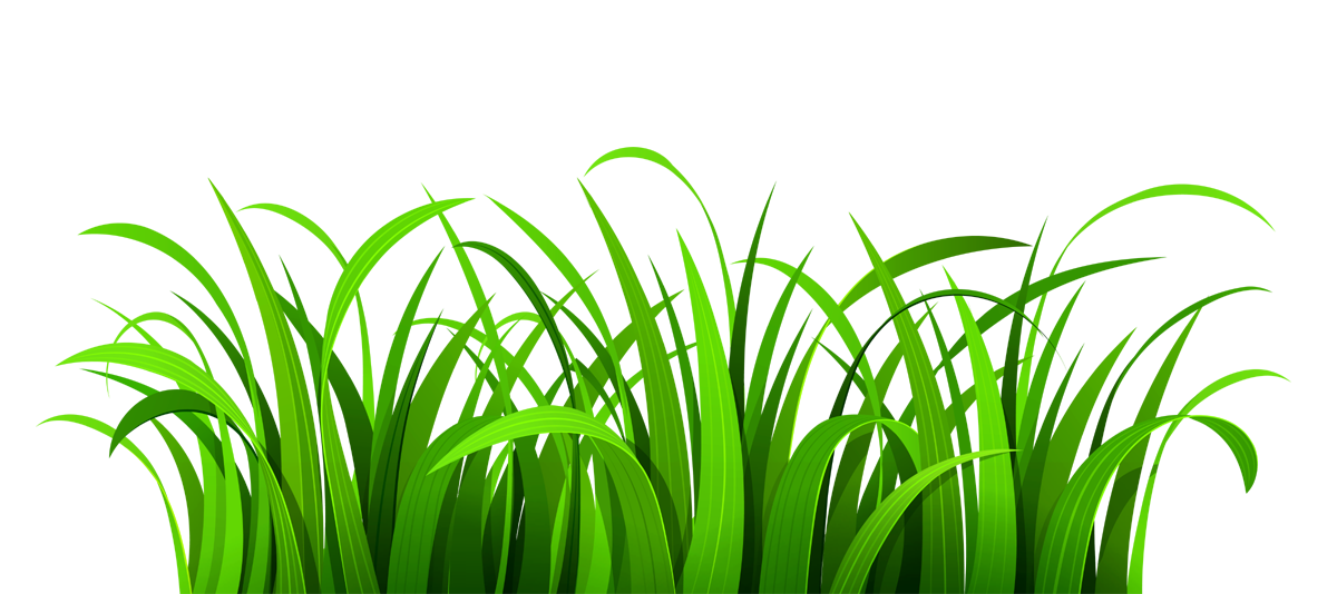 Nice green and beautiful lawn clipart vector transparent library Lawn clipart PNG and cliparts for Free Download - Clipart Collection vector transparent library