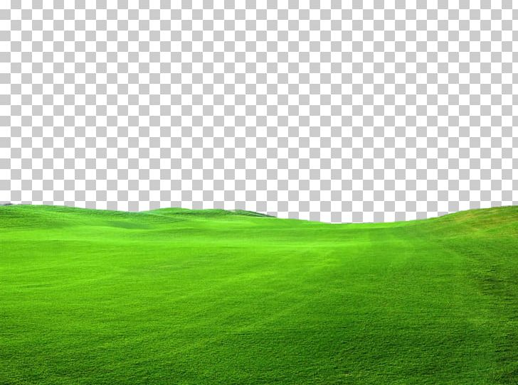Nice green and beautiful lawn clipart banner free stock Lawn Green Grassland Sky PNG, Clipart, Baby, Beautiful, Cleaneating ... banner free stock