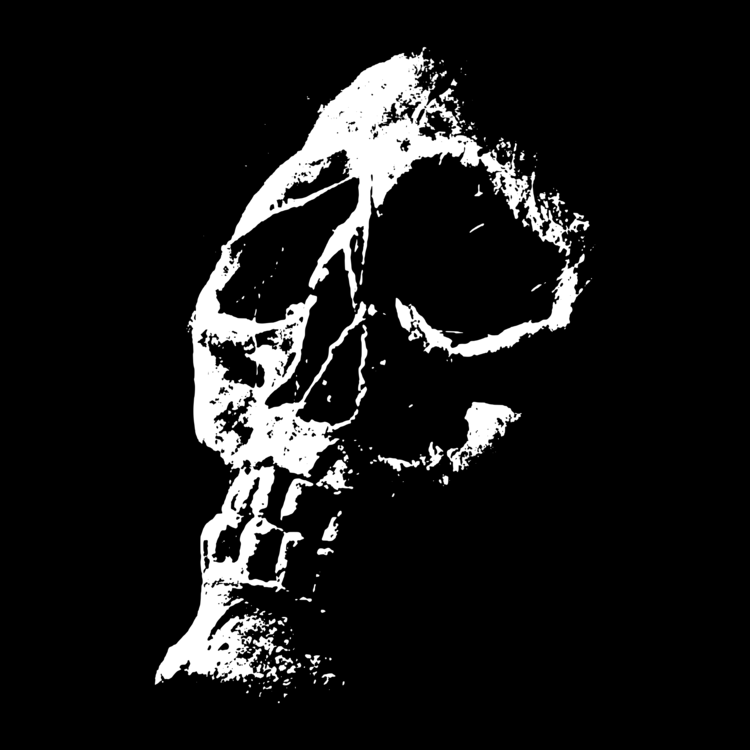 Night of the living dead clipart clip art royalty free library Art,Skeleton,Skull Vector Clipart - Free to modify, share, and use ... clip art royalty free library