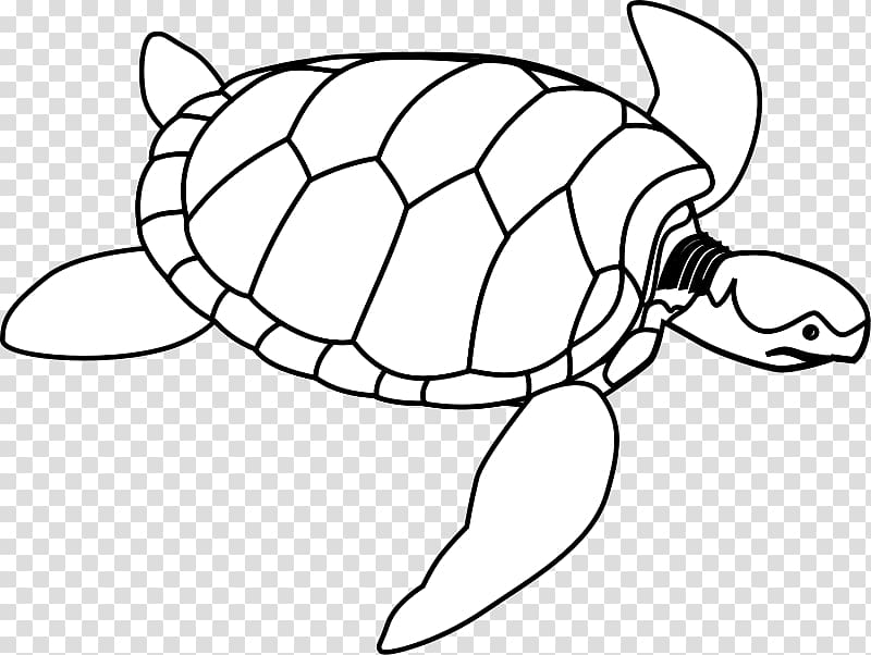 Ninja turtles silhoutte black and white clipart no background image Green sea turtle , Of Turtle transparent background PNG ... image