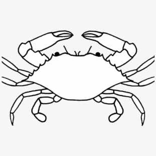 No copyright crab clipart black and white banner library Crustacean Clipart Crab Drawing - Crab Black And White ... banner library