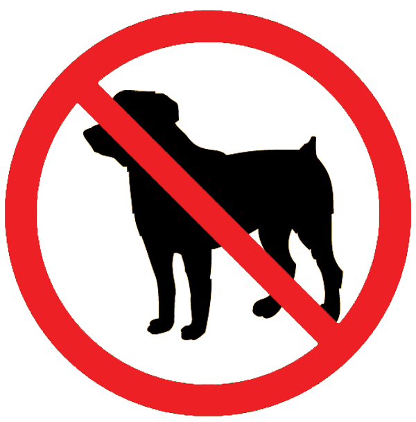 No dog clipart png free download Waves Campground - Delicate Nobby - Crescent Head, NSW png free download