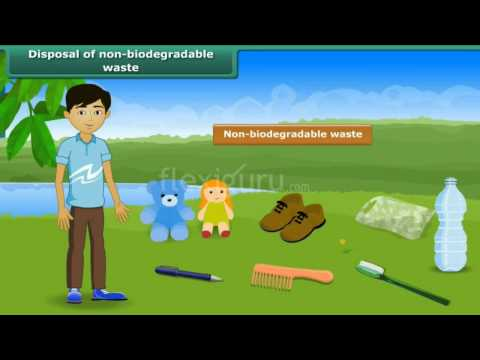 Non biodegradable waste examples clipart clipart royalty free library Disposal of Non-Biodegradable Waste - YouTube clipart royalty free library