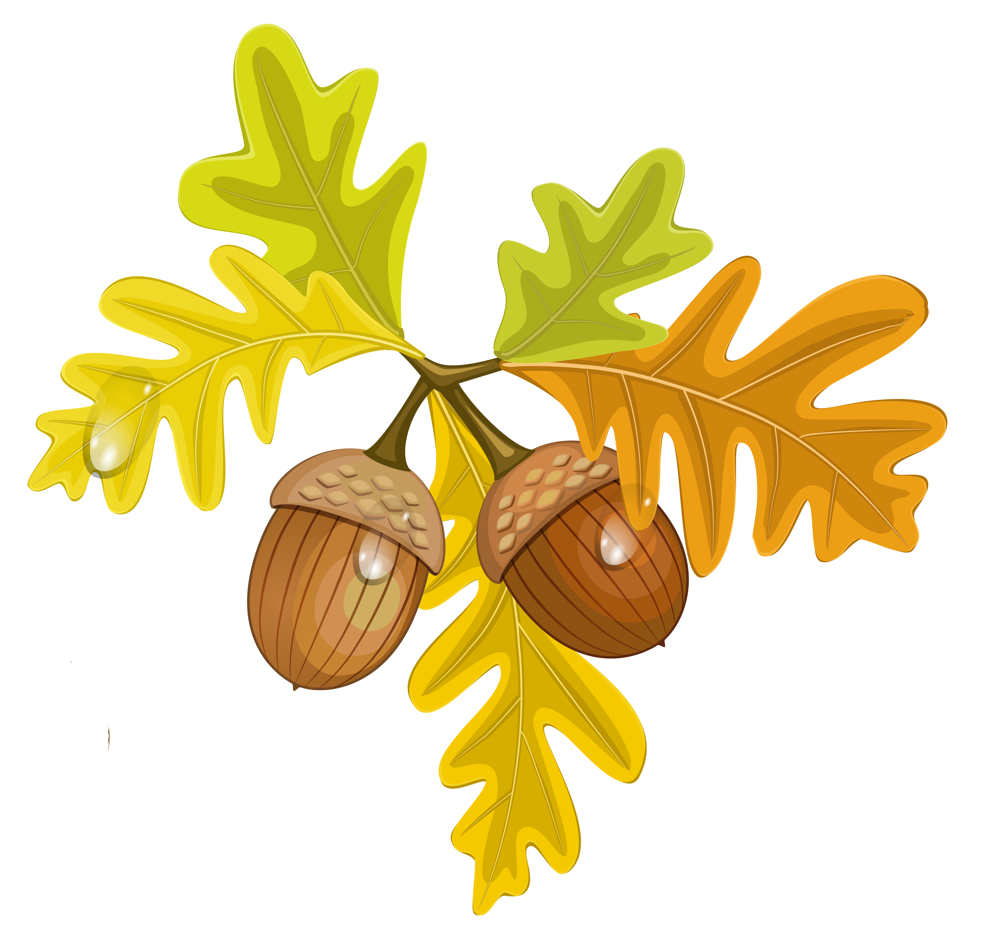 Oak tree leaf clipart jpg transparent download Transparent Fall Leaves with Acorns | Gallery Yopriceville - High ... jpg transparent download