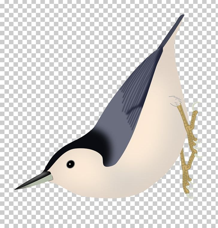 Nuthatch clipart clipart transparent Bird Passerine White-breasted Nuthatch Yunnan Nuthatch Brown ... clipart transparent