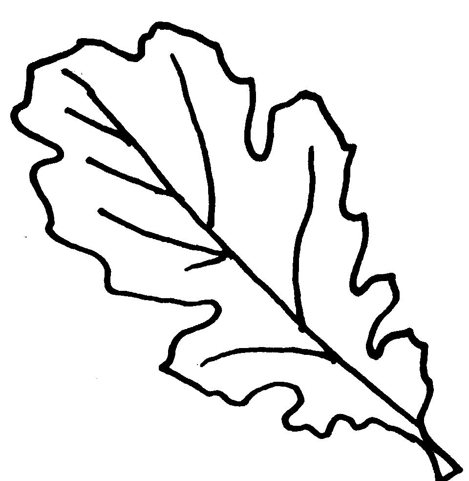 Oak leaf clip art black and white jpg library stock Free Oak Leaf Clipart - Clipart Kid jpg library stock