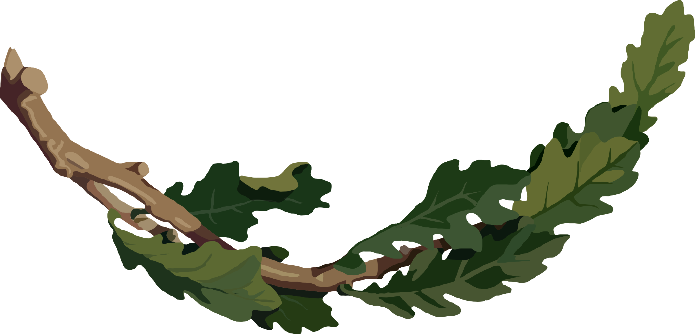 Oak tree branches clipart picture free download Clipart - Oak branch 2 picture free download