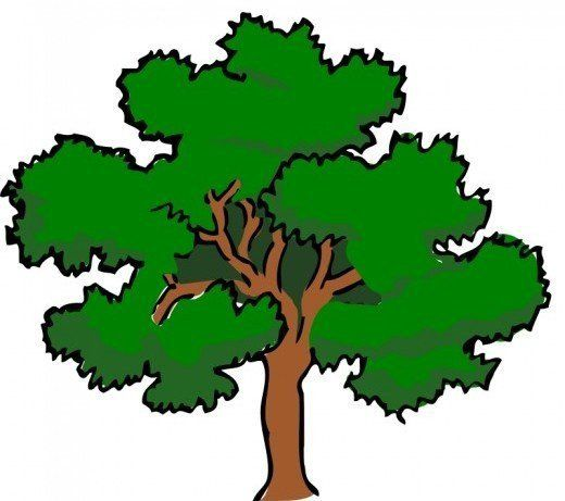 Oak trees clipart black and white stock Oak Tree Clip Art | greg shirts | Picture tree, Tree graphic ... black and white stock