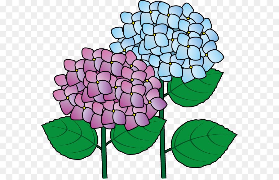 Oakleaf hydrangea clipart clip art freeuse Flowers Clipart Background clipart - Flower, Plants, Plant ... clip art freeuse
