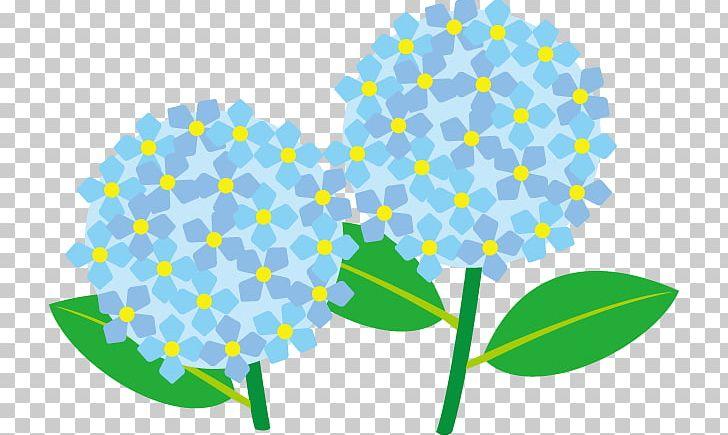 Oakleaf hydrangea clipart clip art royalty free French Hydrangea Panicled Hydrangea Oakleaf Hydrangea Hydrangea ... clip art royalty free