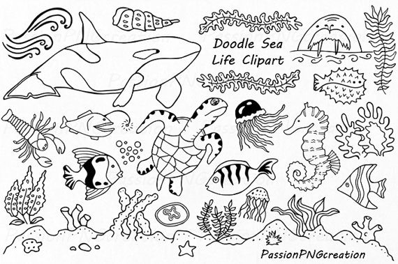 Ocean animals clipart cartoon black and white svg transparent library Doodle Marine Life Clipart, Sea Life clip art, Ocean life, PNG, EPS ... svg transparent library