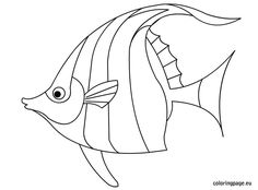 Ocean clipart friendly fish black and white clipart free 53 Best fish template images in 2017 | Fish template, Fish, Fish ... clipart free