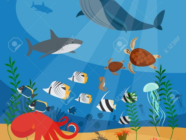 Ocean habitat clipart jpg free library Free Ocean Clipart, Download Free Clip Art on Owips.com jpg free library