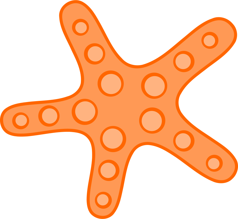 Ocean star clipart png transparent library Free Ocean Starfish Cliparts, Download Free Clip Art, Free Clip Art ... png transparent library