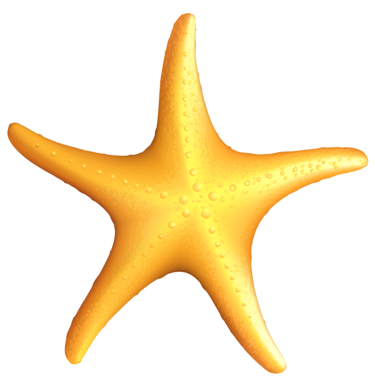 Ocean star clipart clip royalty free stock Clipart images of starfish | little friends | Starfish, Starfish ... clip royalty free stock