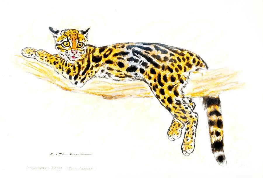 Ocelot clipart vector transparent library Download Ocelot clipart Leopard Ocelot Jaguar   Cat, Drawing ... vector transparent library