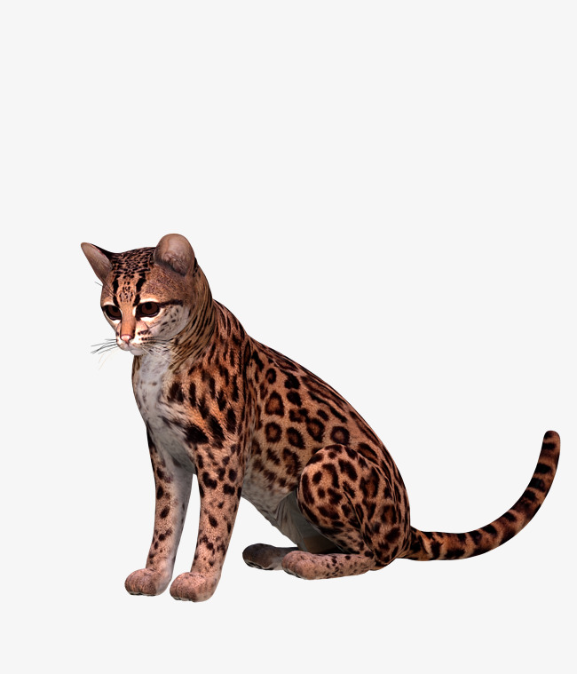 Ocelot clipart clip art royalty free download Ocelot clipart 6 » Clipart Station clip art royalty free download