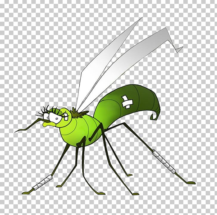 Office com clipart west nile virus png free library Insect Mosquito Dengue West Nile Fever West Nile Virus PNG ... png free library