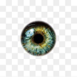 Ojos clipart para photoshop graphic black and white Eyeballs, Eye, Eyeball, Eye Material PNG Transparent Image and ... graphic black and white