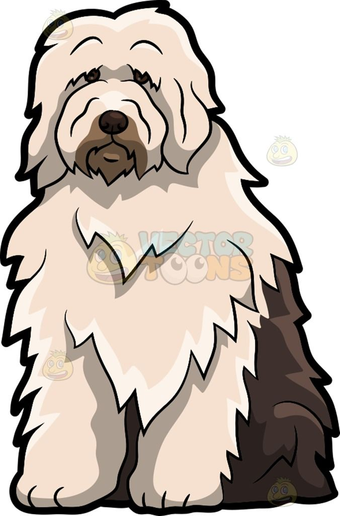 Old english sheepdog clipart graphic free download A Sad Old English Sheepdog : A dog with thick bright beige and ... graphic free download
