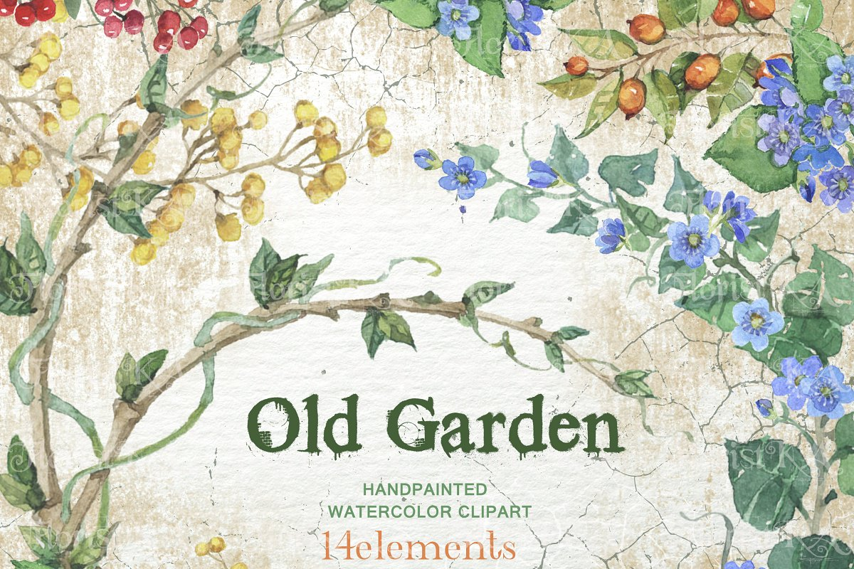 Old market clipart banner library stock Old Garden Watercolor clip art F-09 ~ Graphic Objects ... banner library stock