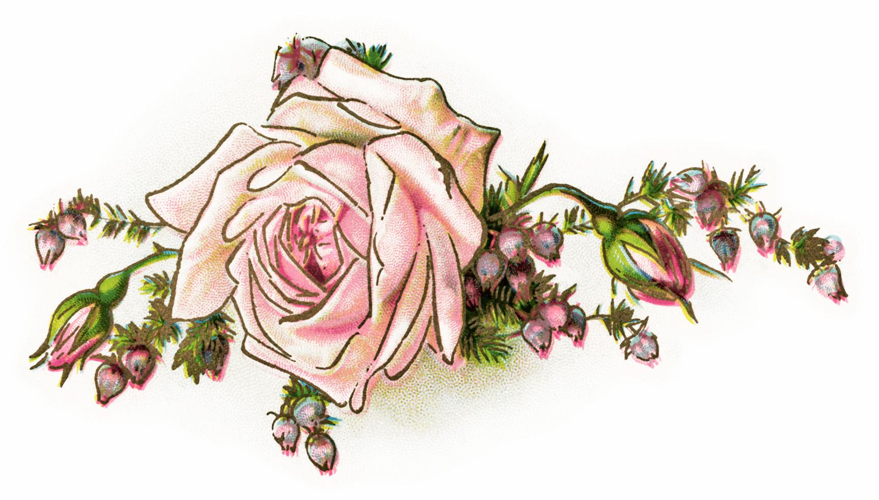 Old roses clipart clip art library Free Vintage Clip Art Pink Rose and Poem - Old Design Shop Blog clip art library