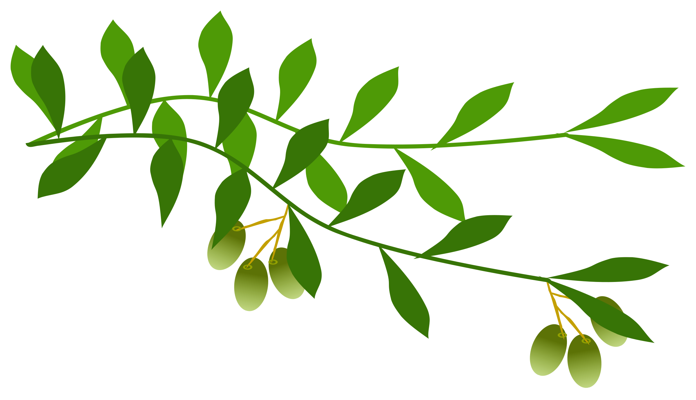 Olive branches clipart picture black and white Olive Branches Png, png collections at sccpre.cat picture black and white